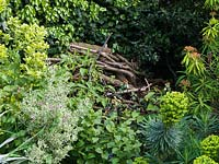 A pile of branches too big to compost create a sanctuary for wildlife.