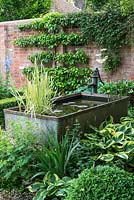 A galvanised metal animal feeding trough converted into a small pond in a shady corner of a walled garden surrounded by shade tolerant planting including hosta, alchemilla and box.