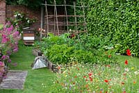 A small wildflower meadow of daisies, poppies, toadflax, clover, cow parsley and cornflowers sown in the middle of a lawn beside raised vegetable beds planted with potatoes, rhubarb and beans. Beyond, is a working bee hive.