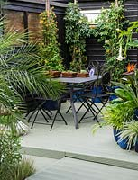 A decked dining area surrounded by containers planted with Datura, Strelitzia, Passiflora