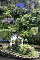 The lush vegetation fringing the Central Lake at Monte Palace Tropical Garden, Madeira, with tree ferns, and tiled panels