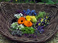 Freshly picked edible flowers including borage, marigold, courgette, thyme, lavender, borage, bean and viola.