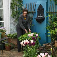 Judith Strong on the sunny patio of her 18m x 7m walled London back garden full of spring tulips.