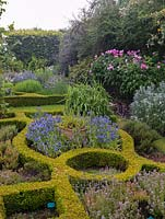Box knot garden filled with herbs and flowers such as catanache and echium.