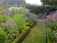 Box edged beds. Seen here: borage, fennel, salvia, catmint, campanula, poppy, eryngium, Galega officinalis Alba.