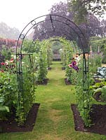 Potager. Metal tunnels, clad in sweet peas and runner beans, run down the centre of a formal scheme of beds filled with vegetables and flowers. Obelisks of sweet peas.