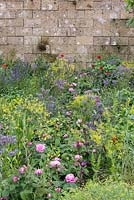 A Perfumer's Garden in Grasse by L'Occitane. Detail of planting including Rosa centifolia, borage - Borago officinalis, dyer's woad - Isatis tinctoria and field poppies - Papaver rhoeas