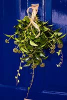 Christmas spray of ivy sprayed with gold and attached to door knocker with gold ribbon. On blue painted door