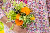 Woman holding floral bouquet of Calendula officinalis 'Art Shades', Sage and Borage