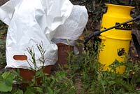 Cover nearby plants with polythene bags when using weedkiller