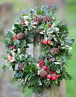 Christmas wreath with red berries and crab apples. December.