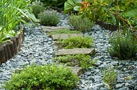 A thyme walk, Thyme vulargis and Thyme x citriodorus 'Variegatus' planted in between stepping stones.