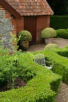 Buxus sempervirens - Box balls in terracotta pots by brick sheds. Formal knot garden with child's white metal chair. Heveningham, Suffolk