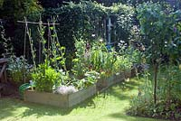 Vegetable beds in summer with sweet peas, herbs and flowers