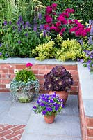 Just Retirement: A Garden For Every Retiree, view of brick border with Double Rosa 'Darcey Bussell', Alchemilla mollis and Aeonium 'Zwartkop', Viola, Pelargonium in flower pots. Designer: Tracy Foster Sponsor: Just Retirement Ltd