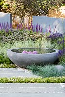 Modern concrete circular water feature and grey paving slabs surrounded by Festuca glauca, Lavandula, Thymus. H U G: Healing Urban Garden. Designer: Rae Wilkinson. Sponsor: Living Landscapes