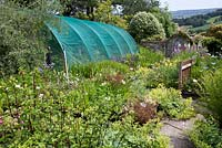 The Nursery - an extension to the plant centre at its rear and more plants in the arched shelter. Burrow Farm Gardens, Axminster, Devon. July.