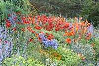 Detail from the Kniphofia slope with Asclepias tubrosa, Perovskia 'Blue Spire', Crocosmos 'Lucifer', Agapanthus, Kniphofia 'Alcazar' and Lychnis coronaria 'Alba'
