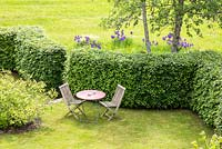 Garden furniture on a lawn sheltered by a hornbeam hedge, planting includes, Calycanthus floridus, Fagus sylvatica, Iris sibirica