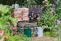 Water tank and tap for irrigation in the cottage garden: Rosa, Sidalcea, Cynara scolymus, rhubarb - Rheum and Ocimum 'African Blue', watering cans