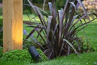 Lighting feature at the base of the first wooden arch, accompanied with Saxifraga and Phormium 'Bronze Baby'