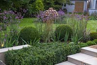 Detail of border planting beside the sunken seating area, with Verbena bonariensis, Calamagrostis x acutiflora 'Karl Foerster' and Buxus sempervirens balls