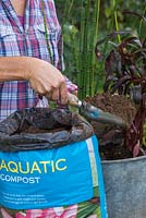 Filling in tin bath with additional aquatic compost