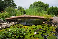Wooden footbridge over rock edged pond with mauve Nymphaea - Water Lilies Papyrus - Ornamental Grass also known as Cyperus - Egyptian Paper Rush, Typha latifolia - Common Cattails in backyard garden in summer