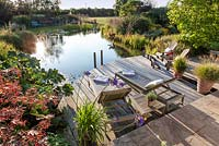 Tranquil scene of swimming pond and decking area at sunset.
