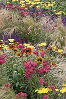 Dense colourful planting to represent an 'energy flash' of plants in the 'Quantum of Light' Garden at RHS Tatton Flower Show 2015