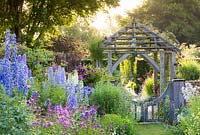 Shortly after dawn in the Sundial Garden at Wollerton Old Hall Garden, Shropshire - photographed in July. Planting includes Delphiniums, Phlox paniculata, Knautia and Campanula lactiflora.