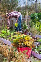 Clean up vegetable garden in autumn. Remove all of the spent plant material from the garden. Removing infected and dead leaves November. Garden waste collected in plastic tube.