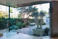 View through modern glazed doors to paved area with mature olive tree adn topiary buxus sempervirens balls.