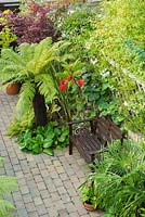 Aerial view of small town garden with plants chosen for their distinctive foliage including tree fern, bamboo, acer, bergenia, trachycarpus, rhus, Solanum laxum 'Album'and actinidia. Wooden bench. Block paving.