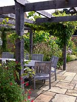 Dining table and chairs beneath pergola with wisteria and vine. In the forground Salvia 'Royal Bumble' with Tithonia rotundifolia, Tulbaghia violacea and miscanthus behind.