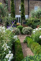 In 12m x 6m town garden, formal parterre with box and variegated holly standards, and box edged beds of Phlox paniculata 'David', Aconitum 'Spark's Variety', sanguisorba and red or pink persicarias.