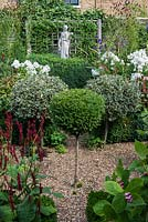 In 12m x 6m town garden, formal parterre with box and variegated holly standards, and box edged beds of Phlox paniculata 'David', Aconitum 'Spark's Variety', red Persicaria amplexicaulis 'Firetail and pink berried Triosteum erythrocarpum.