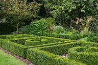 A formal garden with box parterre and lawn. Behind Malus Royalty and Magnolia grandiflora.