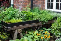 A small couryard with raised bed filled with herbs.