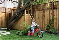 Child playing in garden. Planting includes: Fagus sylvatica purpurea treehouse, Buxus semperivens, Geranium phaem, Hydrangea 'Annabelle', astroturf
