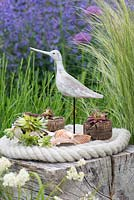 A bird sculpture with succulents planted in shells and cork in a contemporary seaside themed garden with beachcombing finds.