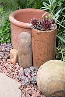 Terracotta pots with sempervivum, gravel border and stone paving
