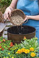 Planting a copper pot with hot coloured plants. Add gravel to the bottom of the container to improve drainage.