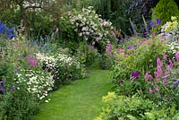 A grass path through double herbaceous borders with cottage style plants including aconites, delphinium, thalictrum, campanula, feverfew, leucanthemum, centaurea, alchemilla, foxglove, catmint, hardy geranium, prairie mallow and tobacco plant. At the far end Rosa 'Belvedere' rambling over a pergola.