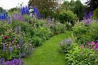 A grass path passes through double herbaceous borders with cottage style plants including aconite, delphinium, thalictrum, campanula, feverfew, leucanthemum, centaurea, alchemilla, foxglove, catmint and hardy geranium.