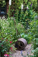 A cottage garden with cast iron roller in front of a wooden summerhouse, by clump of feverfew.