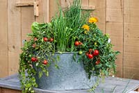A recycled galvanised metal wash tub planted with spring onions, cos lettuce, Tomato 'Losetto' and marigolds, Calendula officinalis, a companion plant to deter whitefly from tomatoes.