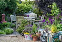 A patio seating area behind a small container garden planted with lavender, origano, thyme, sage and strawberry in terracotta containers, metal bath tub and upcycled wheelbarrow.