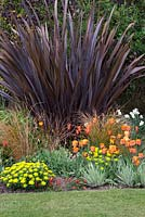 A hot spring border with tulips, Carex testacea, Euphorbia polychroma and Phormium tenax 'Purpureum'. Tulips 'Ballerina' and 'Cairo'.