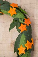 Citrus Star Wreath. Detail of scented wreath made with Laurel leaves and small Orange stars